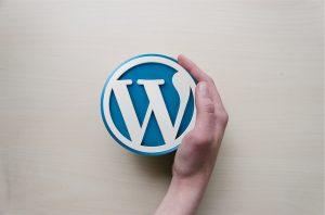A hand holding a WordPress logo.