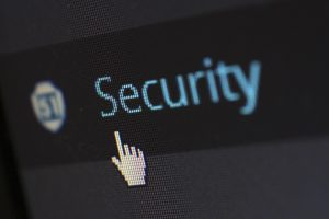 The Security option in WordPress.