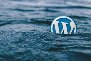 The WordPress badge in water.