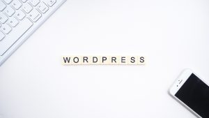 The word WORDPRESS on a white surface.