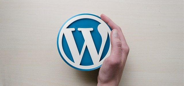 Hand holding a WordPress logo.