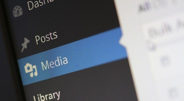 WordPress media section.